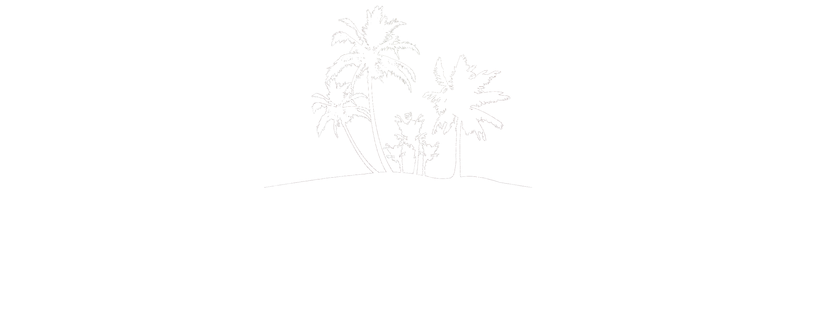 Nature Boat Tours